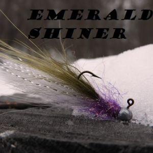 Emerald Shiner Jig