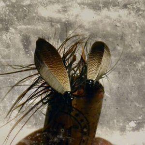 Spey Bugs